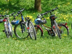 Fahrradtour am Niederrhein